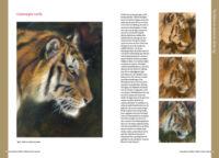 Boek dieren tekenen en schilderen met Marjolein Kruijt-TIJGER-preview