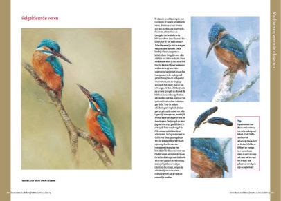 Boek dieren tekenen en schilderen met Marjolein Kruijt-IJSVOGELS-preview