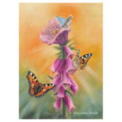 Schilderij vlinders bij vingerhoedskruid bloemenplant door Marjolein Kruijt (te koop)