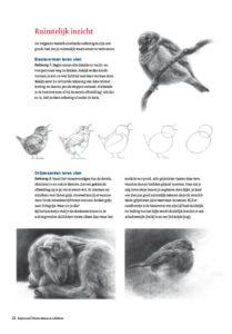 Ruimtelijk dieren tekenen en schilderen met Marjolein Kruijt