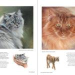 Boek Inspirerend dieren tekenen en schilderen - Marjolein Kruijt DEEL 2 - katten schilderen