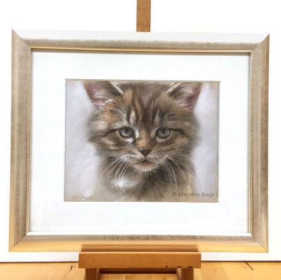 'Kitten', portret in pastel, kattenkunst door Marjolein Kruijt (te koop)