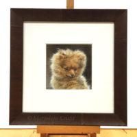 'Dwergkeeshondje pup', portret schilderij in acryl, Marjolein Kruijt (te koop)