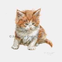 Miniatuur portret,rode kitten, acryl, 10x10 cm, Marjolein Kruijt (verkocht)