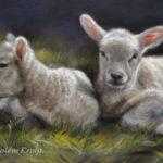 'Lammetjes', olieverf schilderij, Marjolein Kruijt (verkocht)