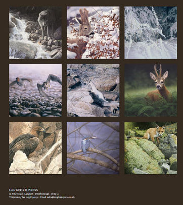 Boek Wild in Europa door Renso Tamse wildlife kunstenaar