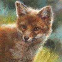 'Jonge vos', schilderij 18x13 cm, olieverf (te koop)