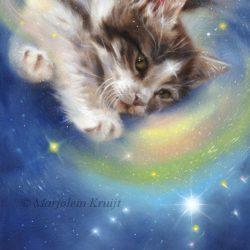 'Release' -Kitten/Orion, 30x22 cm, olieverf (te koop)