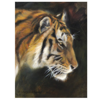 'Tijger' , 18x24 cm, olieverf schilderij, €900 incl. lijst