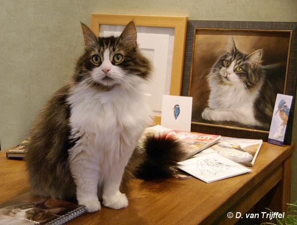 Review en ervaringen dierenportretten Marjolein Kruijt - testimonials
