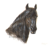 Miniatuur portret, fries paard, acryl, 10x10 cm, Marjolein Kruijt (verkocht)
