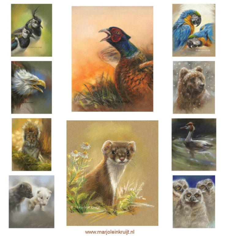 Dieren pastel tekeningen en schilderijen door Marjolein Kruijt (te koop)