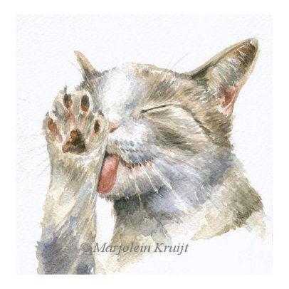 'Wassende kat', 15x15 cm, aquarel (te koop)