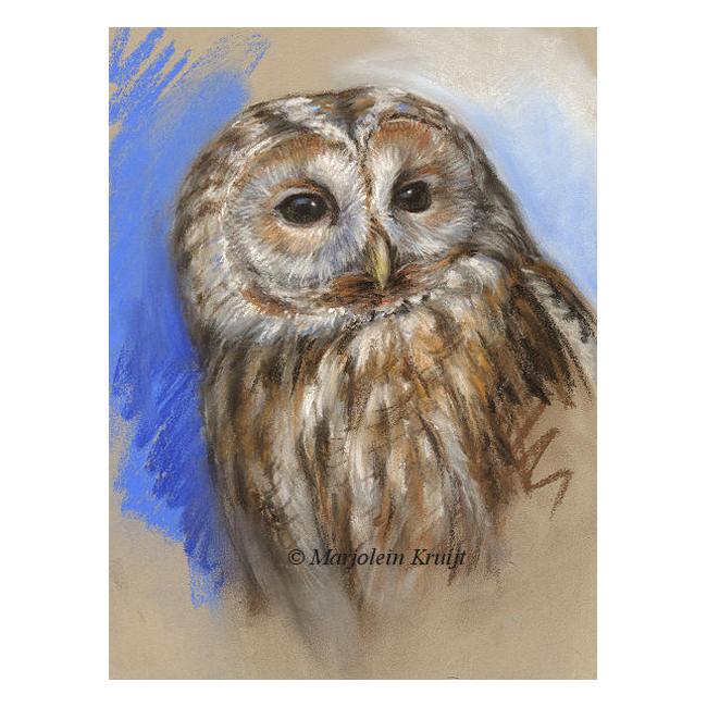 'Bosuil', pastel schilderij / tekening (te koop)