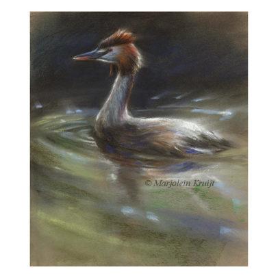 'Fuut', pastel schilderij (te koop)