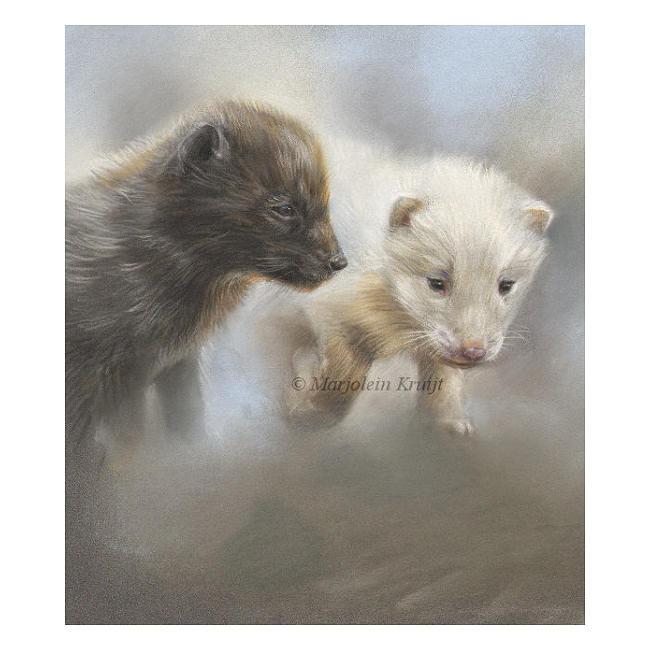 'Steppevosjes', pastel schilderij / tekening (te koop)