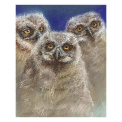 'Uilskuikens', pastel schilderij (te koop)