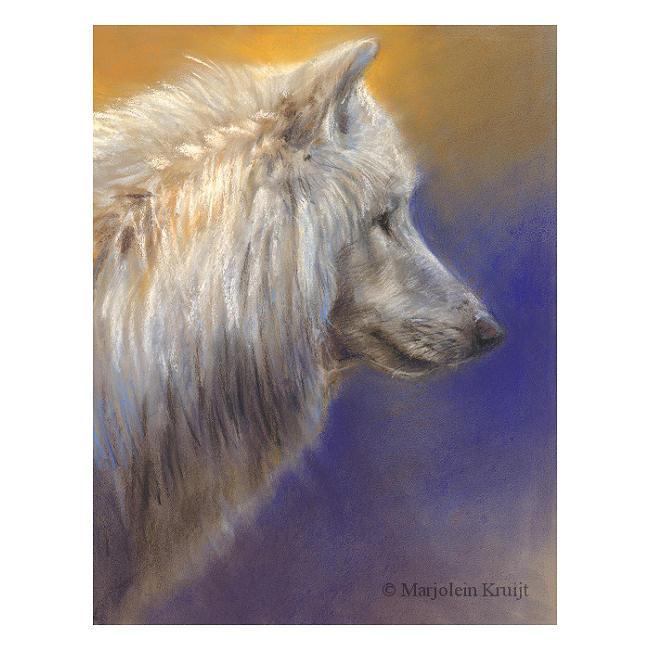 'Witte wolf', 20x30 cm, pastel, €650 incl. lijst