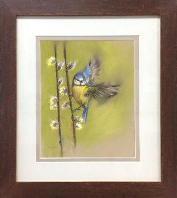 'Pimpelmees op katjes', pastel schilderij incl. lijst 46x41 cm (te koop)