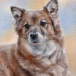 'Kathie', 30x24 cm, olieverf schilderij (verkocht/opdracht)