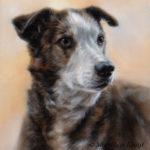 'Linda',30x24 cm, olieverf schilderij (verkocht/opdracht)