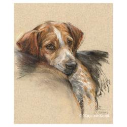 'Beagle', 40x30 cm, pastel schilderij, €750 incl.lijst