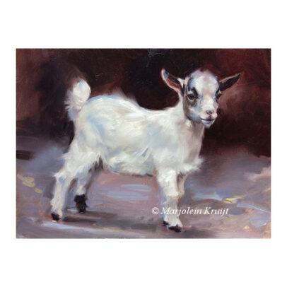 'Jong geithe', 18x24 cm, olieverf schilderij (te koop)