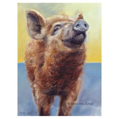 'Wolvarkentje', 15x20 cm, olieverf schilderij, €850 incl. lijst
