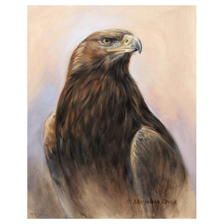 steenarend roofvogel schilderij te koop marjolein kruijt