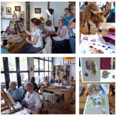 Workshop / masterclass: leer dieren tekenen en schilderen met Marjolein Kruijt