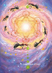 'Mieren- metatron cube' olieverf schilderij (gepubl. als oracle card)