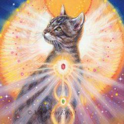'Kat', olieverf schilderij (gepubl. als oracle card)