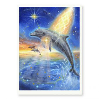 'Dolphin' - limited edition print