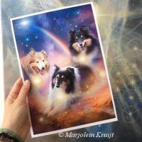 Spirituele huisdier en honden portretten in opdracht - Marjolein Kruijt