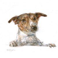 Miniatuur portret, Jack Russel, acryl, 10x10 cm, Marjolein Kruijt (verkocht)