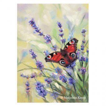 'Dagpauwoog vlinder op lavendel', olieverf schilderij 18x13 cm (te koop)