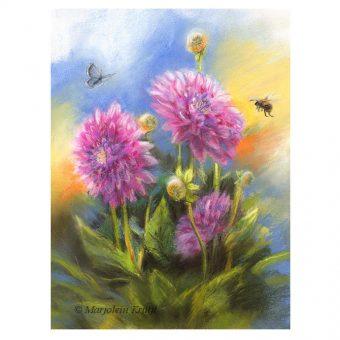 'Dahlia's', pastel 27x22 cm incl lijst (te koop)