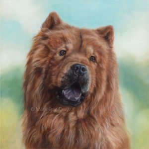 'Chowchow'- Hachi, 40x40 cm, olieverf portretschilderij in opdracht (verkocht)