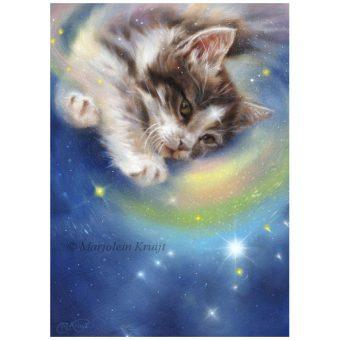 'Release' -Kitten/Orion, 30x22 cm, olieverf schilderij (te koop)