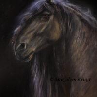 'Fries', vrij paardenportret in opdracht , olieverf (verkocht)