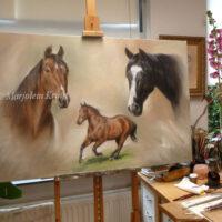 'Paarden portretten', 80x120cm, schilderij in olieverf (portretschilderij in opdracht/verkocht)