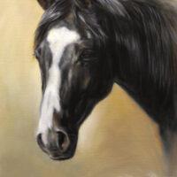 'Portret paard', schilderij in opdracht [close-up ca. 60x50 cm] (verkocht)