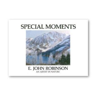 BOEK Special Moments - E John Robinson te koop