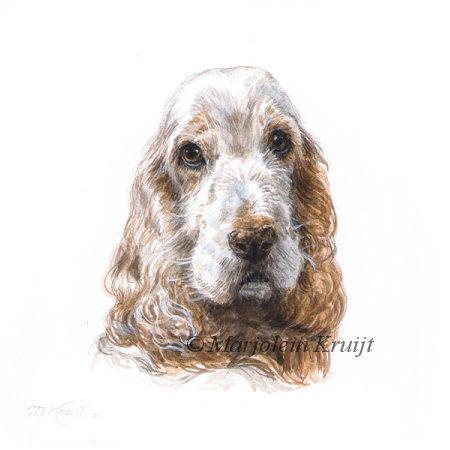 'Cocker Spaniel'-Guido, 10x10cm, portret in acryl (verkocht/opdracht)