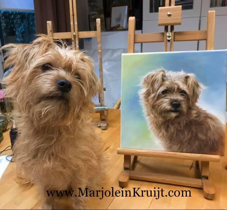 Portret schilderij: honden- en huisdierportretten in opdracht door Marjolein Kruijt