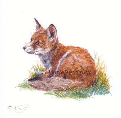 'Baby vosje', 11x11 cm, (schilderij te koop)