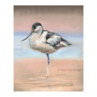 'Kluut', vogelschilderij in pastel (te koop)