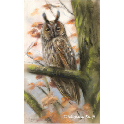 'Ransuil', 25x38 cm, pastel, €900 incl. lijst