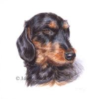 'Teckel'-coco, portret 10x10 cm, acryl op papier (verkocht)