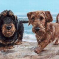 'Teckels aan zee', 40x60 cm, olieverf schilderij (verkocht/opdracht)